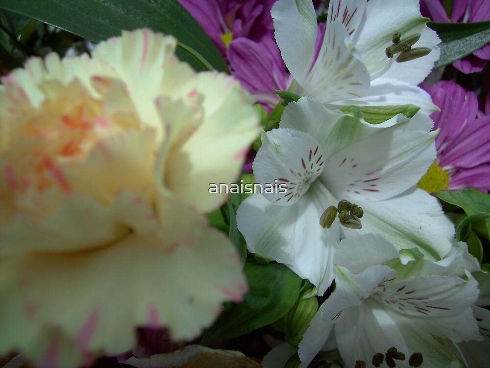 floral 3 by anaisnais