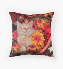 Good Morning Smile ~ Cute Kitty Cat Kitten in Fall Colors taking a Nap Throw Pillow