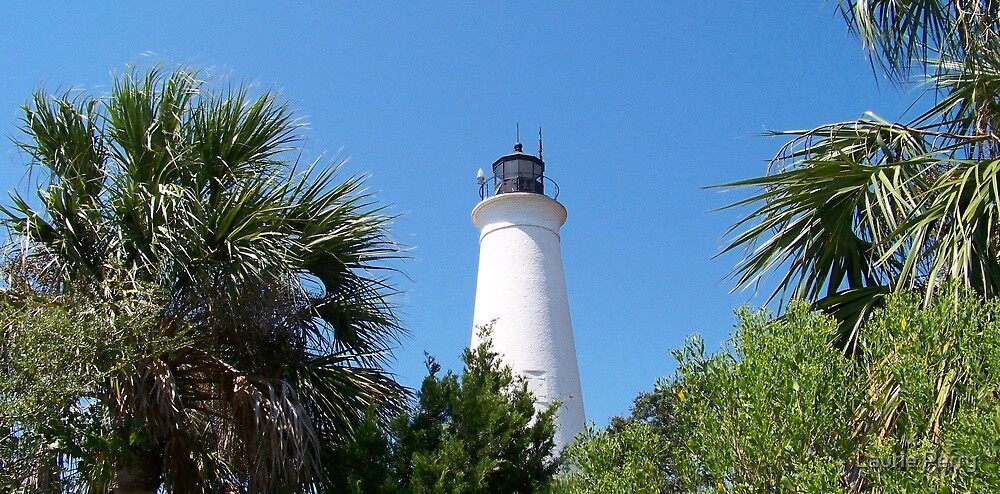 St. Marks Lighthouse by Laurie Perry