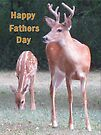 Happy Fathers Day by Ginny York
