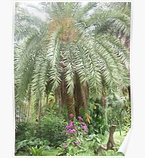 Dazziling flowers climbing up magestic palm tree Poster