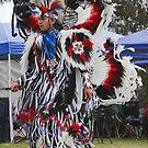 Pow Wow Dancer VII by Heather Friedman