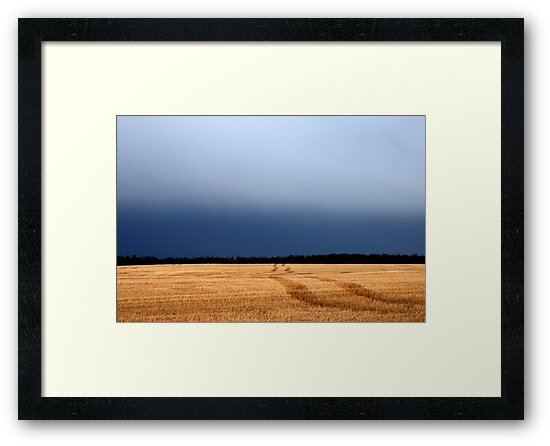 Prairie Field  and Sky  by Randall Talbot