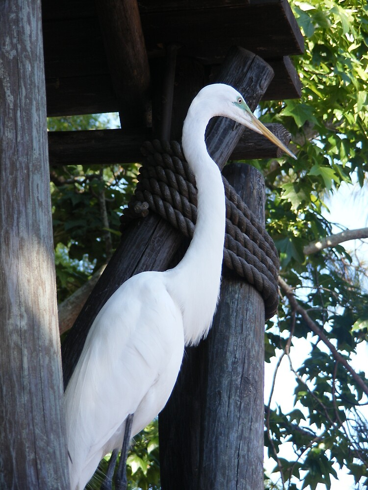 Egret's Perch by Z.S. Lewis
