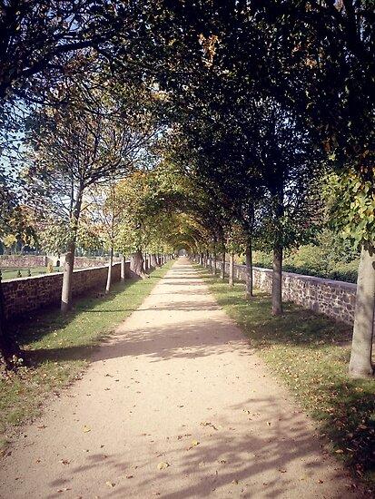 Park-Allee