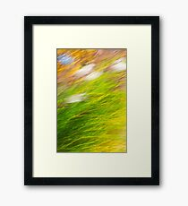 Fall Grass Abstract Framed Print