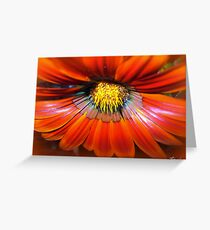 Spicy! Greeting Card