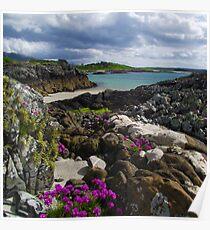 Sea pinks & spring colour, Morar Poster