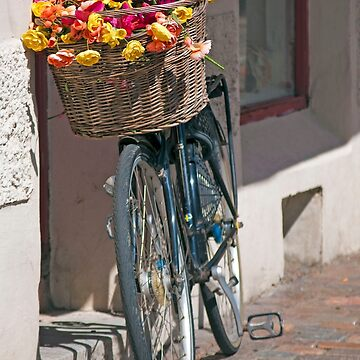 Bicycle with Floral Basket by aislingk
