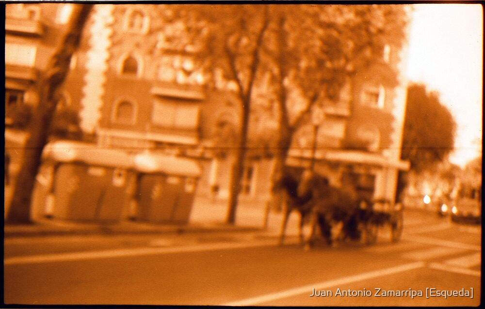 canonet_2_0004_XnView by Juan Antonio Zamarripa [Esqueda]