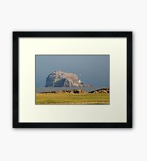 Bass Rock from Glen golf course, North Berwick Framed Print