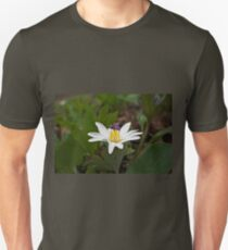 Bloodroot Wildflower - Sanguinaria canadensis T-Shirt