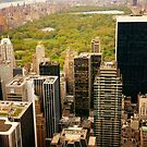 Central Park New York City From Above by Vivienne Gucwa