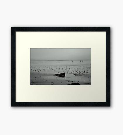 Shore Fishing Framed Print