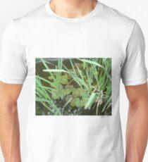 Very coy! Unisex T-Shirt