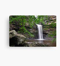 Cedar Falls, Petit Jean Mountain Arkansas Canvas Print
