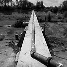Path of the Pipe by David Lamb
