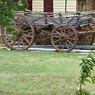 Transport in Oatlands by DEB CAMERON