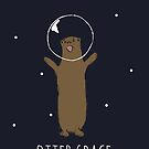 Otter Space by Rizwanb