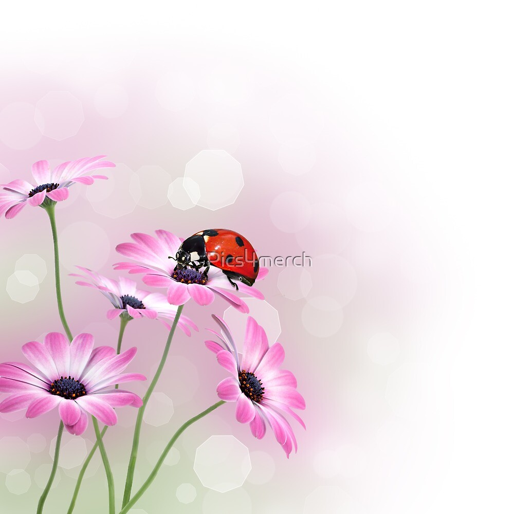 Flowers with ladybird by Pics4merch