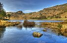 Blea Tarn..High Water by Jamie  Green