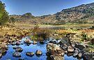 Blea Tarn..Low Water by Jamie  Green