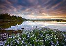 Snowdonia - Sunrise across the Afon Glaslyn by Angie Latham