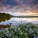 Snowdonia - Sunrise across the Afon Glaslyn by Angie Latham