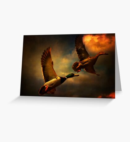 Flying Ducks Greeting Card