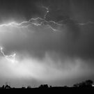 May Showers Lightning Thunderstorm 2 Black and White by Bo Insogna