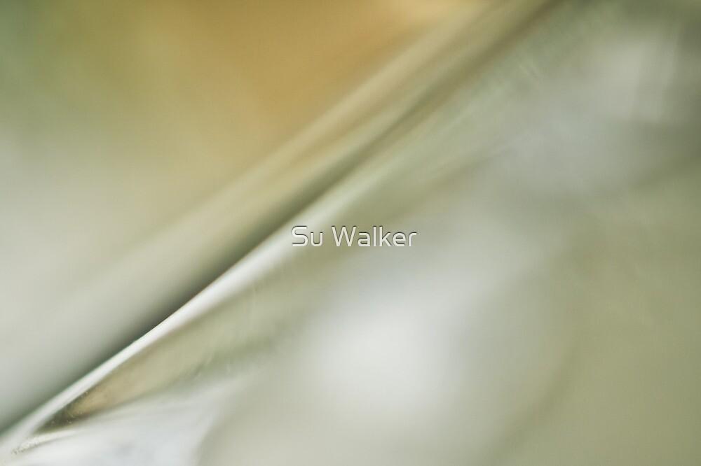 Quill by Su Walker