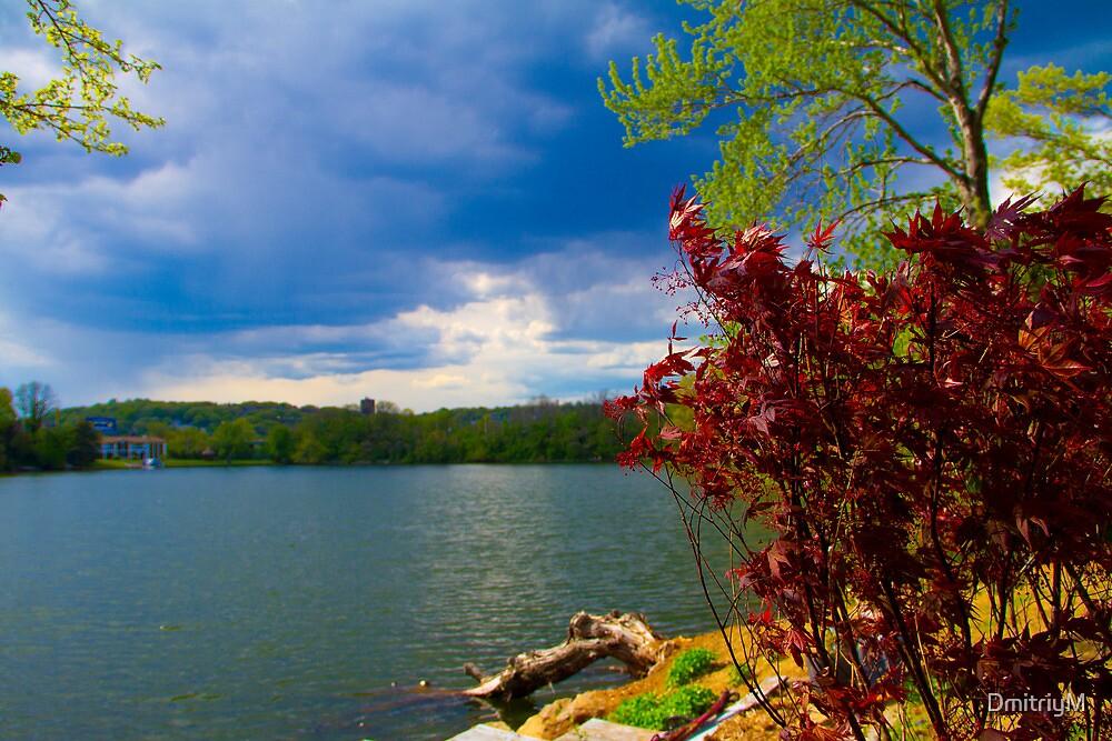 Save The Lake by DmitriyM