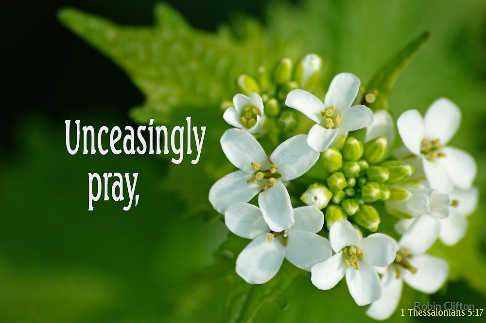 Quot Unceasingly Pray 1 Thessalonians 5 17 2 Of 3 Quot By