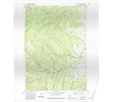 USGS Topo Map Oregon Rail Gulch 281219 1972 24000 Poster