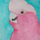 Galah - Rose Breasted Cockatoo by Joann Barrack