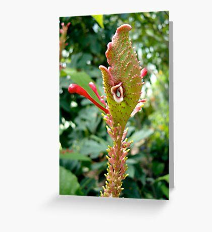 Wild looking tropical flower Greeting Card