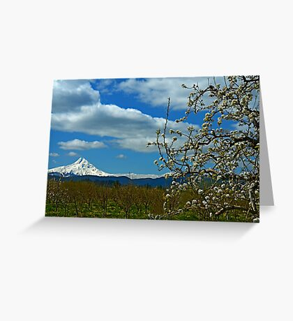 Fruit Loop Landscape Greeting Card