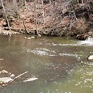 Panorama of Dam - Mill Creek Park by Grant Taylor
