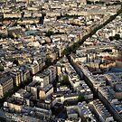 Paris vista by Victor Pugatschew
