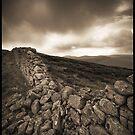 Batt's Wall by Neil Carey