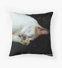 DRAMA Throw Pillow
