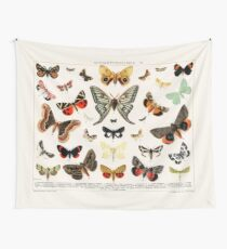 1894 Antique Butterfly Classification Illustration Tapestry