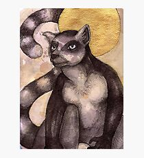 Illuminated Lemur Photographic Print
