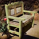 Green Bench - Sayulita, Mexico by Lynnette Peizer