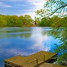 Brady Lake Dock by DmitriyM