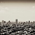 Johannesburg East with CBD in Background by RatManDude
