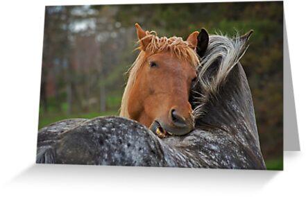 Horse Hug by Daniel  Parent