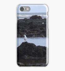 Seagull on rocks iPhone Case/Skin