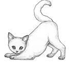White Kitten by MadliArt
