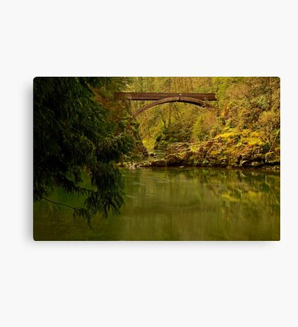 Picture Yourself Canvas Print